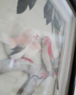 cadre-oiseaux-2