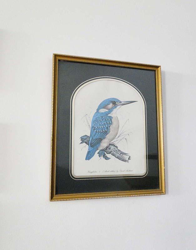 cadre-oiseau-bleu-1